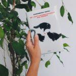 Anemonebook - Se i gati scomparissero dal mondo